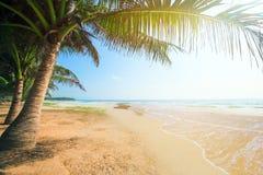 Setzen Sie mit Kokosnusspalme und -meer zur Sonnenuntergangzeit auf den Strand stockbilder