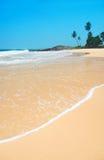 Setzen Sie mit Wellen gegen Felsen und Palmen am sonnigen Tag auf den Strand Stockfoto