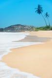 Setzen Sie mit Wellen gegen Felsen und Palmen am sonnigen Tag auf den Strand Stockfotos