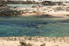 Setzen Sie nahe dem Leuchtturm EL Toston, nördlicher Teil von Fuerteventura auf den Strand Lizenzfreies Stockbild