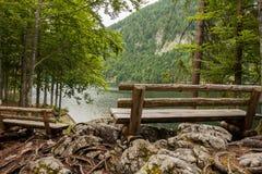 Setzen Sie nahe dem See, toplitzsee, Österreich auf die Bank Lizenzfreie Stockfotos