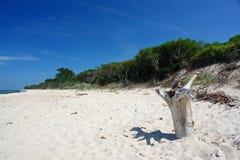 Setzen Sie, steigernde Farben, Stück Holz auf den Strand. Stockfotos