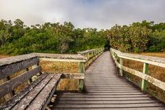 Setzen Sie und eine Promenade in den Sumpfgebieten der Sumpfgebiet-Staatsangehörig-Gleichheit auf die Bank Stockfotografie