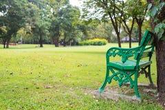Setzen Sie unter dem des schönen bunten sonnigen Tag Herbstparks des Baums auf die Bank Stockbild