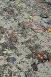 Setzen Sie Verschmutzungsplastikflaschen und anderen Abfall auf Seestrand auf den Strand Lizenzfreie Stockfotos