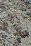 Setzen Sie Verschmutzungsplastikflaschen und anderen Abfall auf Seestrand auf den Strand Stockfoto