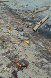Setzen Sie Verschmutzungsplastikflaschen und anderen Abfall auf Seestrand auf den Strand Lizenzfreie Stockbilder