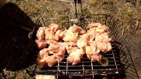Setzt Fleisch auf den BBQ stock footage