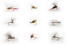Señuelos Fly-fishing Imagen de archivo libre de regalías