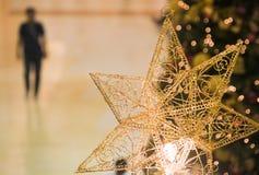 Seul à Noël Photo libre de droits