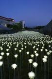 Seul, Corea 19 de mayo de 2017: Rosas del LED en la plaza del diseño de Dongdaemun Foto de archivo libre de regalías