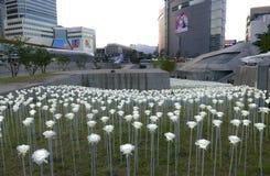Seul, Corea 19 de mayo de 2017: Rosas del LED en la plaza del diseño de Dongdaemun Fotos de archivo libres de regalías