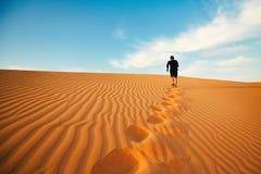 Seul dans le désert photos libres de droits