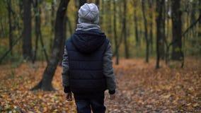 Seul garçon dans une veste bleu-foncé dans le tir de steadicam de longueur de forêt d'automne banque de vidéos