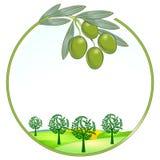 Seul horizontal d'olives illustration libre de droits