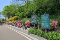 Seul Ihwa malowidła ściennego wioski ulicy widok Zdjęcie Royalty Free