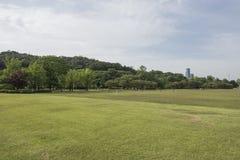 Seul Krajowy cmentarz, Seul, korea południowa zdjęcie royalty free