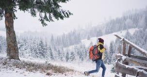 Seul voyageant homme de touristes pendant l'hiver au milieu de la campagne de montagne il explorant l'endroit, il s'est arr?t? clips vidéos