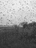 Seule de pluie noir Image libre de droits
