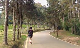 Seule promenade de touristes de femme sur la route en parc naturel Photographie stock libre de droits