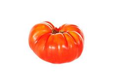 Seule tomate Photos stock