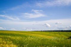 Seulement nature, seulement beauté Photo libre de droits