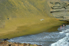 Seulement sur la plage verte de sable Photo libre de droits