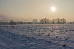 Seunset in winter royalty free stock photography