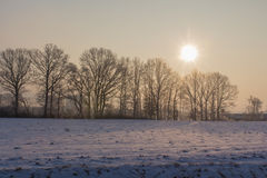 Seunset in winter stock photography