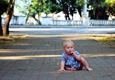 Seva в парке Стоковые Фото