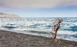 Sevan lake in Armenia Royalty Free Stock Photos