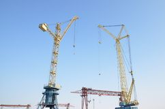 Tower cranes. gantry cranes against the blue sky royalty free stock image