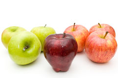 Seven apples Stock Image