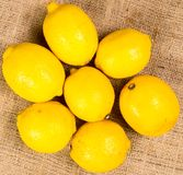 Seven beautifully colored lemons on a canvas Stock Images