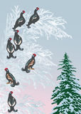 Seven birds on winter tree Royalty Free Stock Photos