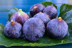 Seven blue figs on mulberry leaf Stock Photos