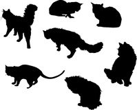 Seven cat silhouettes Royalty Free Stock Photos