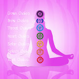 Seven Chakras Stock Images