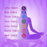 Seven Chakras. Funny illustration of seven Chakras Royalty Free Illustration