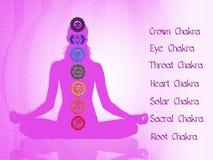 Seven chakras. Funny illustration of Seven chakras Royalty Free Stock Photo
