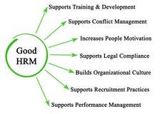 Characteristics of Good HRM. Seven Characteristics of Good HRM Stock Photography