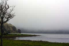 Peaceful Landscape with fog in the forest lake royalty free stock photography