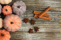 Seven rustic aged pumpkins different colors on a rustic wooden background. Seven Colorful aged pumpkins with star anise and cinnamon siicks all in horizontal royalty free stock photos