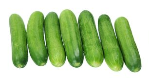 Seven cucumbers Stock Photos