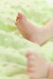 Seven days old baby legs resting in a bed Stock Image
