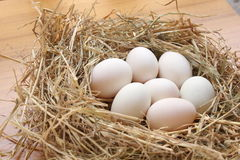 Seven duck eggs on straw Royalty Free Stock Photos