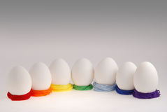 Seven eggs Stock Photos