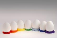 Seven eggs Stock Photos