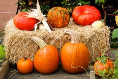 Seven Fall pumpkins on a hay bale. Seven Fall pumpkins arranged on and around a hay bale.  Nice photo for Fall or Halloween or Thanksgiving Royalty Free Stock Images