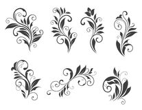Seven floral elements Royalty Free Stock Photo